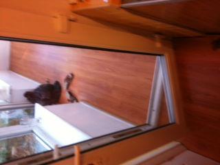 Locksmith repair door newcastle