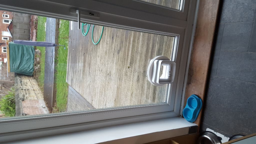 Cat flap installed door in Wallsend