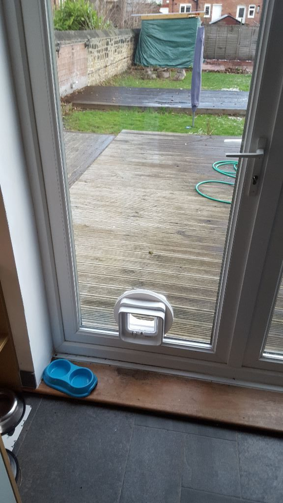 Cat-flap-door-installed